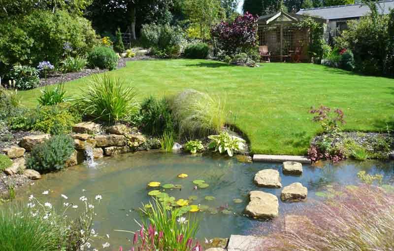 Pond Building Basics Where Do I Start